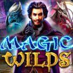 logo de la machine à sous magic wilds