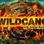 Wild mecano logo