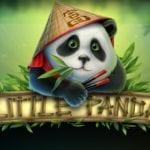 machine a sous little panda