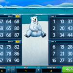 bingo bingo inglu