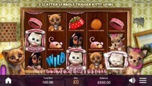 revolver gaming Pet Pay Day