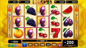 Hot_&_Cash_Slot_EGT_Interactive