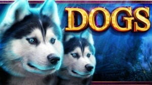 Dogs_High5_Slot
