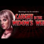 Caught in the Widow's Web high 5 games